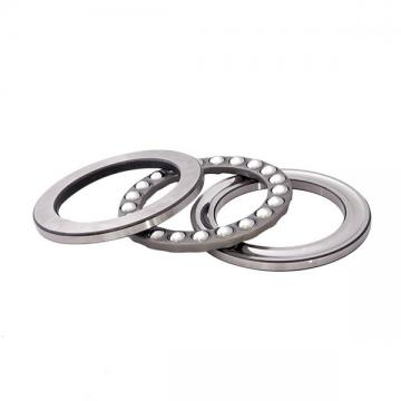 INA D31 Ball Thrust Bearings