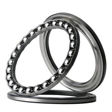 INA D5 Ball Thrust Bearings